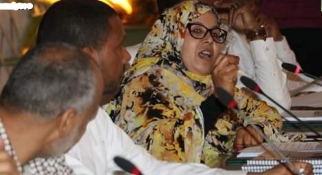 أبلاضي: الديمقراطية والتنمية عنصرا قوة لترافع إيجابي عن الصحراء