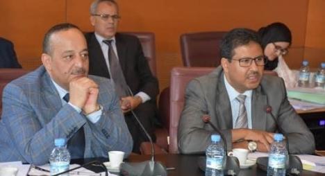 """لجنة التعليم والشؤون الثقافية والاجتماعية تصادق بالإجماع على """"قانون الأمازيغية"""""""