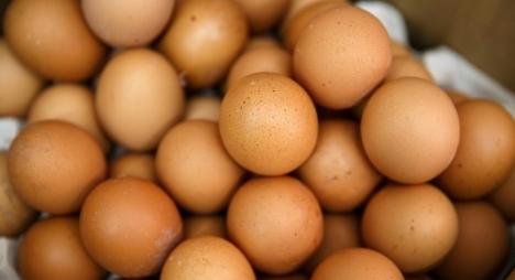 فضيحة البيض الملوث تتجاوز حدود أوروبا لتمتد إلى آسيا
