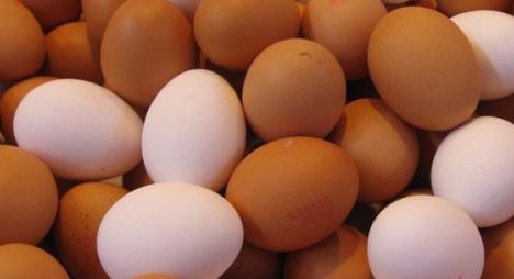 """هل يشكل """"البيض الملوث"""" خطرا على صحة المغاربة؟"""