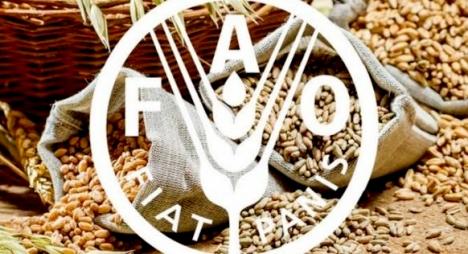 تقرير: الطلب العالمي على الإنتاج الزراعي سيرتفع بـ 15 بالمائة خلال العقد القادم