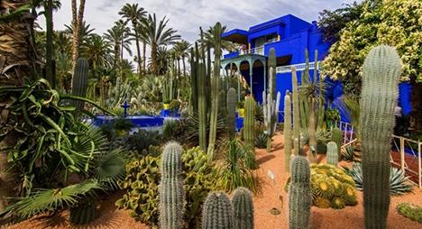 مراكش .. حدائق ماجوريل تنخرط في جهود مكافحة فيروس كورونا