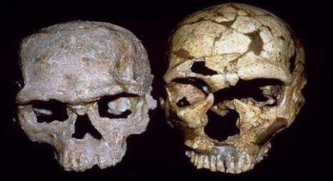 """المعهد الوطني للآثار يعلن عن اكتشاف """"أقدم إنسان عاقل"""" باليوسفية"""