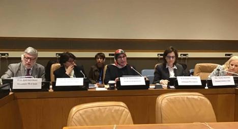 الحقاوي: المغرب راكم إنجازات مهمة في محاربة العنف ضد النساء