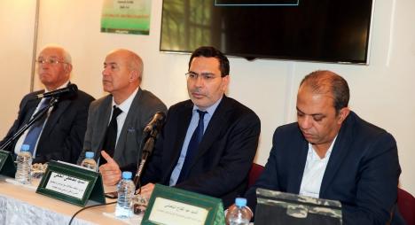 الخلفي: الدفاع عن مغربية الصحراء يقتضي الاستناد إلى الأدلة التاريخية والقانونية