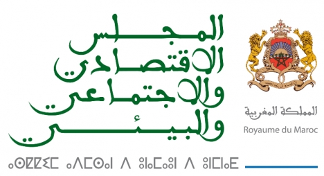 """المجلس الاقتصادي  يصدر تقريرا """"أسودا"""" عن مخطط المغرب الرقمي"""