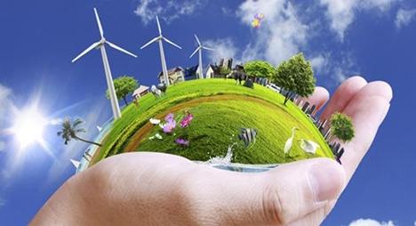 جامعي: الاقتصاد الأخضر يجب أن يحتل مكانة رئيسية في خطة إعادة الإنعاش الاقتصادي