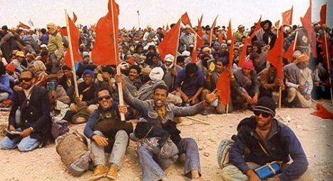 الذكرى الـ 44 للمسيرة الخضراء.. محطة بارزة في تاريخ المملكة