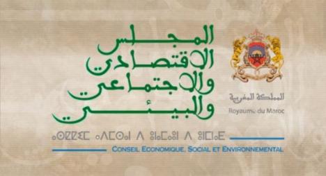 المجلس الاقتصادي والاجتماعي يقترح مبادرة جديدة من أجل الشباب