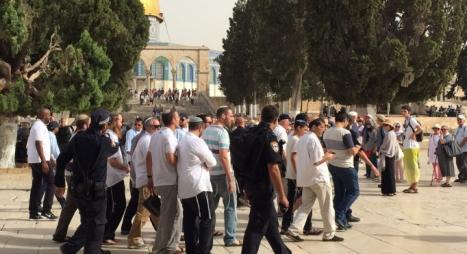أزيد من 150 مستوطنا اقتحموا باحات المسجد الأقصى