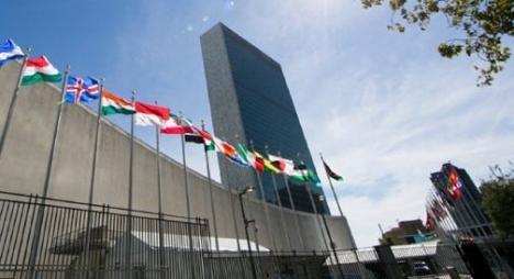 """خبير دولي يؤكد عدم شرعية تمثيل """"البوليساريو"""" للصحراويين"""