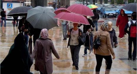 هذه مقاييس التساقطات المطرية المسجلة بالعديد من المدن
