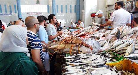 دراسة: طلب إفريقي متزايد على المنتجات البحرية المغربية