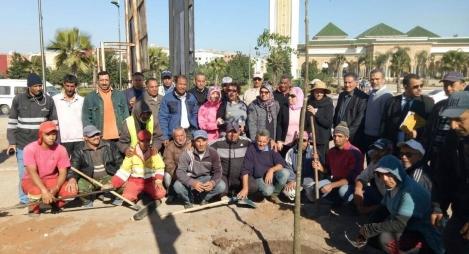 جماعة القنيطرة تطلق عملية واسعة لغرس الأشجار