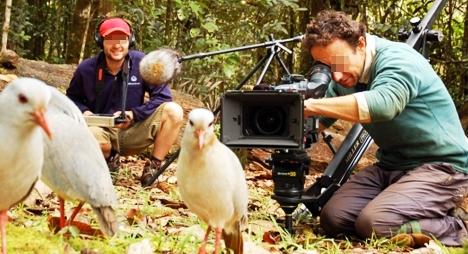 الرباط تحتضن أول مهرجان دولي لفيلم الحيوان والبيئة بإفريقيا