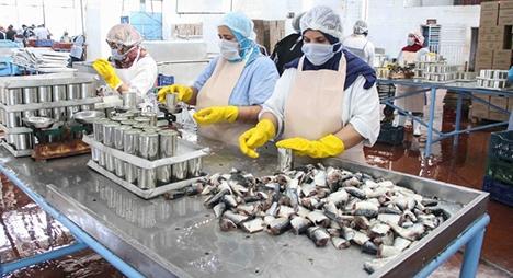 """""""كورونا"""".. متابعة بعض المسؤولين عن تسيير وحدة صناعية لتصبير الأسماك بآسفي"""