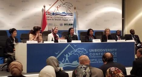 الوفي تستعرض بمصر تجربة المغرب في مجال الحفاظ على التنوع البيولوجي