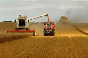 إنتاج المغرب من الحبوب بلغ إلى حد الآن 5.7 مليون...