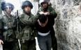 الاحتلال الإسرائيلي يعتقل 8 فلسطينيين في الضفة...