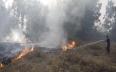 خلال يوم واحد.. بالونات غزة أحرقت ثلاثة آلاف دونم