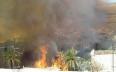 إجلاء العشرات من المواطنين جراء حريق واحة تمنارت...