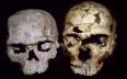 """المعهد الوطني للآثار يعلن عن اكتشاف """"أقدم..."""