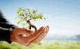 تنظيم حفل تسليم جائزة الحسن الثاني للبيئة في...