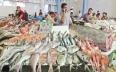 ارتفاع قيمة تسويق منتوجات الصيد الساحلي والتقليدي...